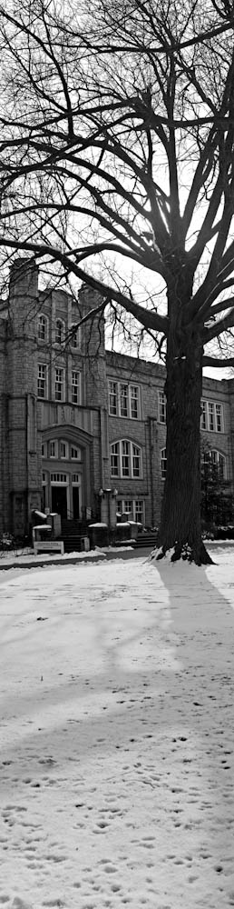 Stephanie Bibb Digital Panorama UCM Campus