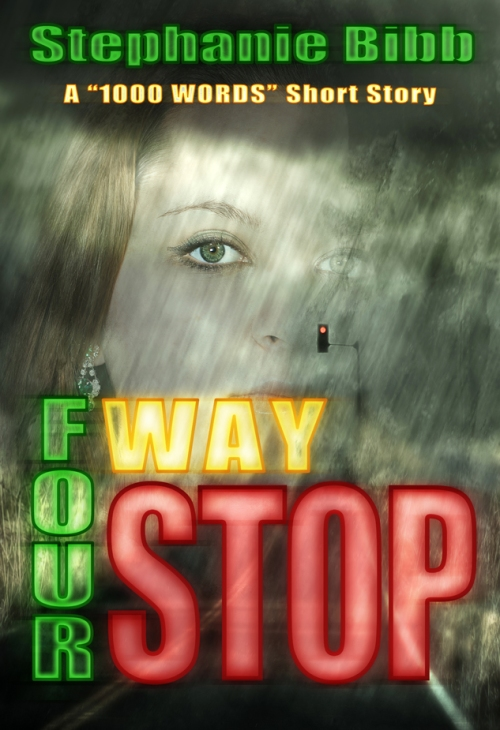 SBibb - Four-Way Stop Cover