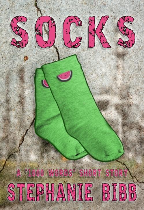 SBibb - Socks Cover In-Progress