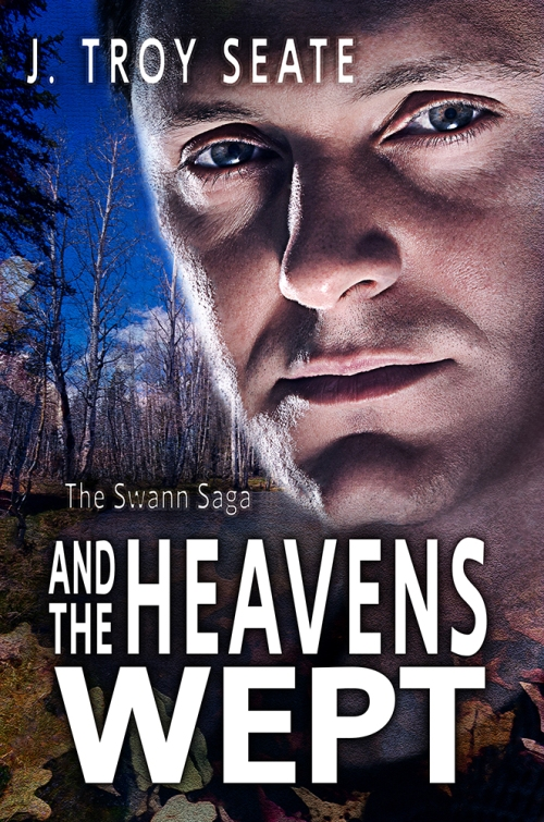 SBibb - Swann Saga Cover