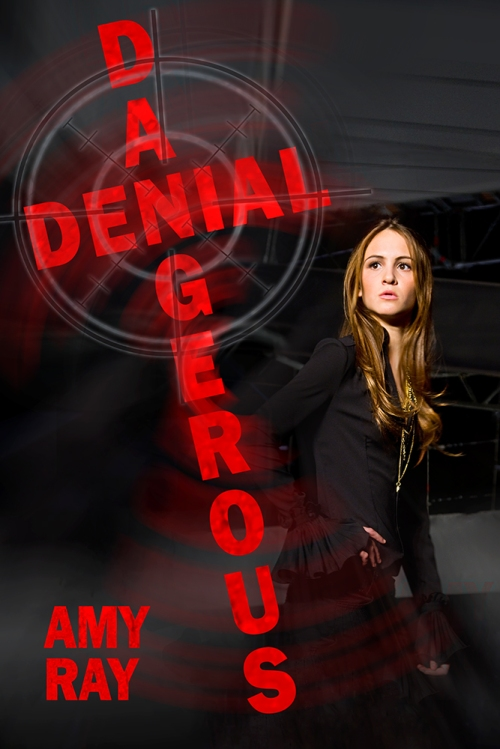 SBibb - Dangerous Denial - Book Cover