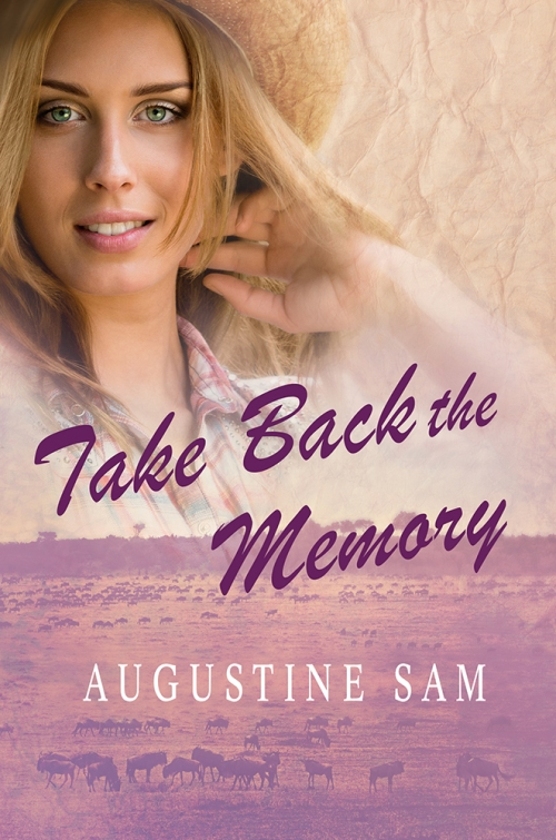 SBibb - Take Back the Memory - Book Cover
