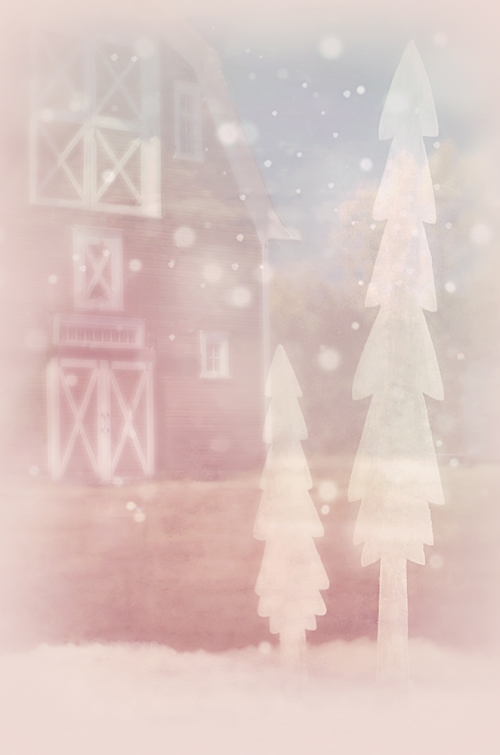 SBibb - Fairy Christmas Darling Book Cover