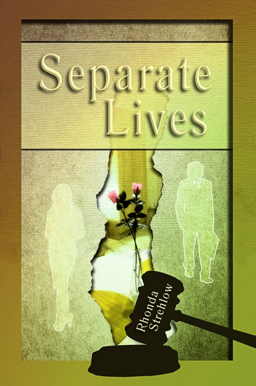 SBibb - Separate Lives - Book Cover