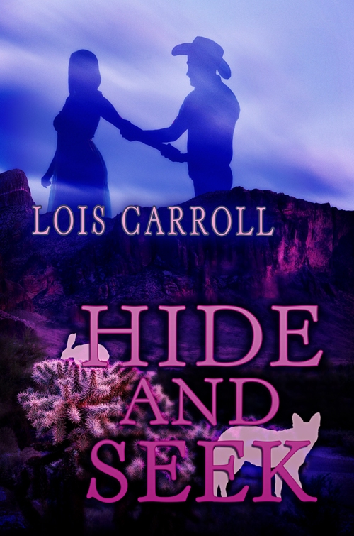 SBibb - Hide and Seek - Book Cover