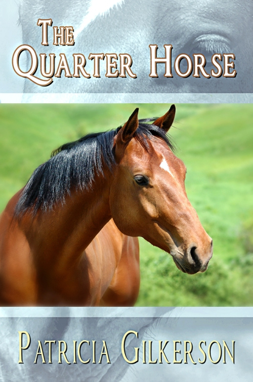 Behind the Scenes - The Quarter Horse