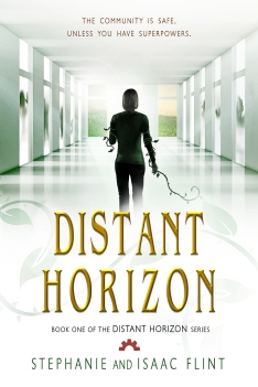 Distant Horizon - New Book Cover
