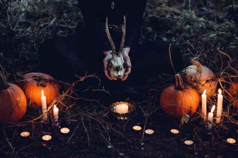 brown pumpkin halloween decor and gray skull at grass field